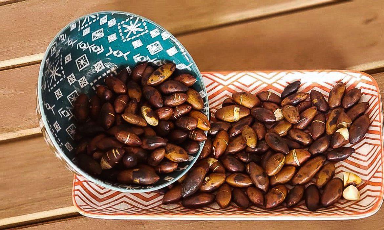 Castanha do Cerrado, baru é rico em nutrientes