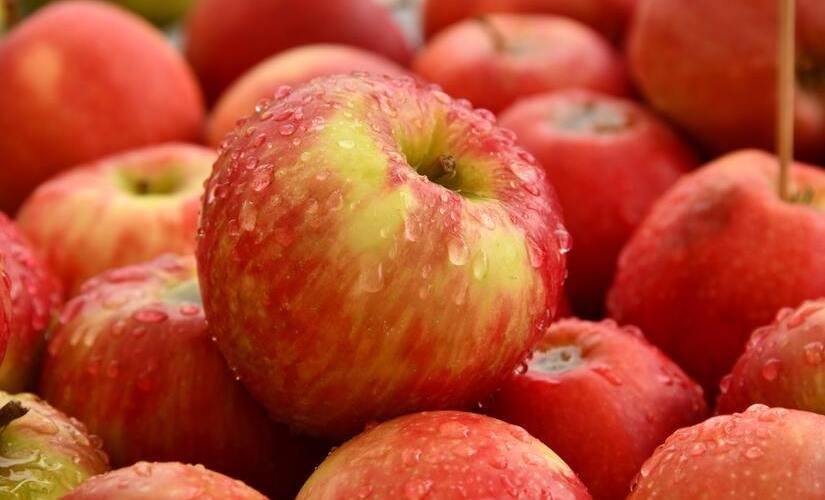 Campanha promove maçãs francesas em SP